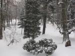 Park zimą.jpg