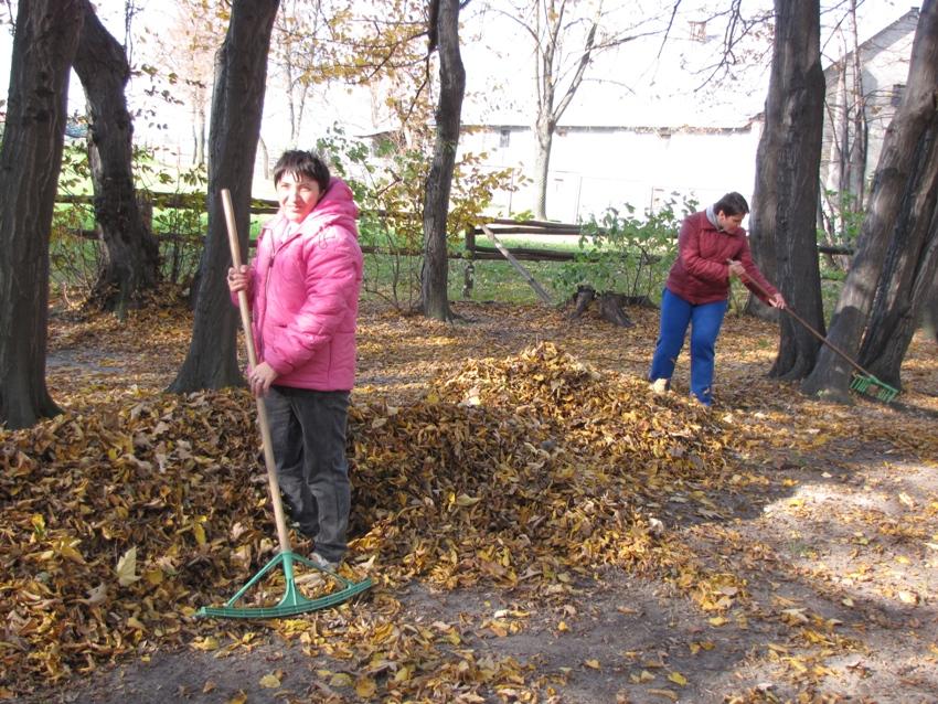 Grabienie liści w parku.jpg